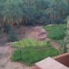 MELALIH Ahmed